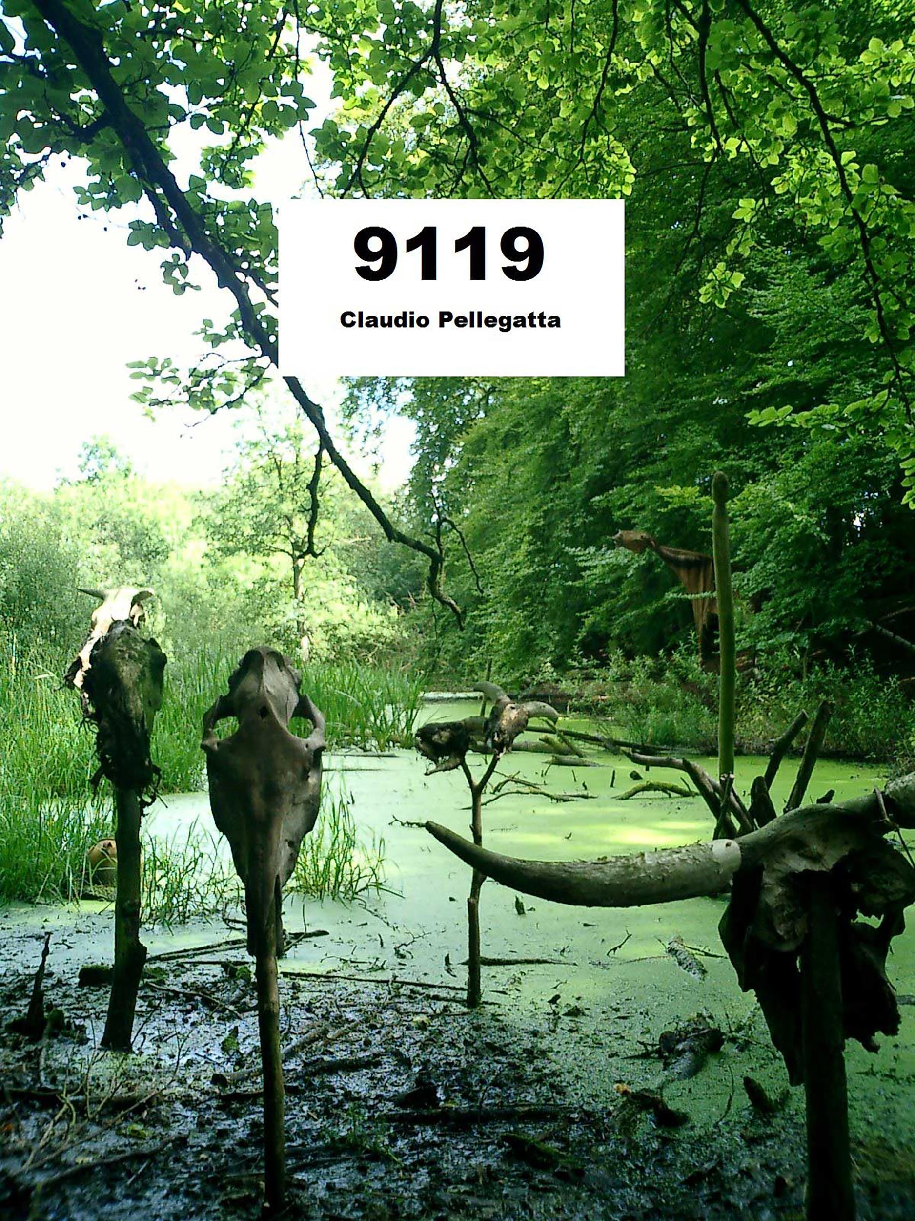 9119 - Teutoburgo
