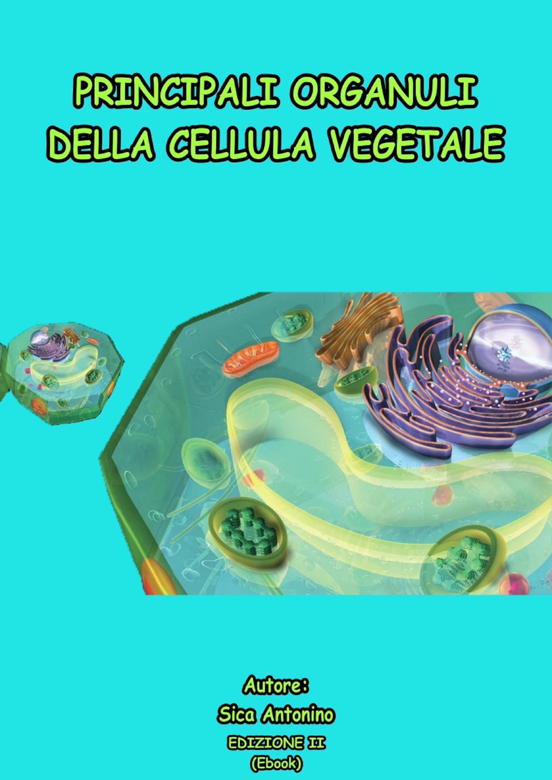 Principali organuli della cellula vegetale
