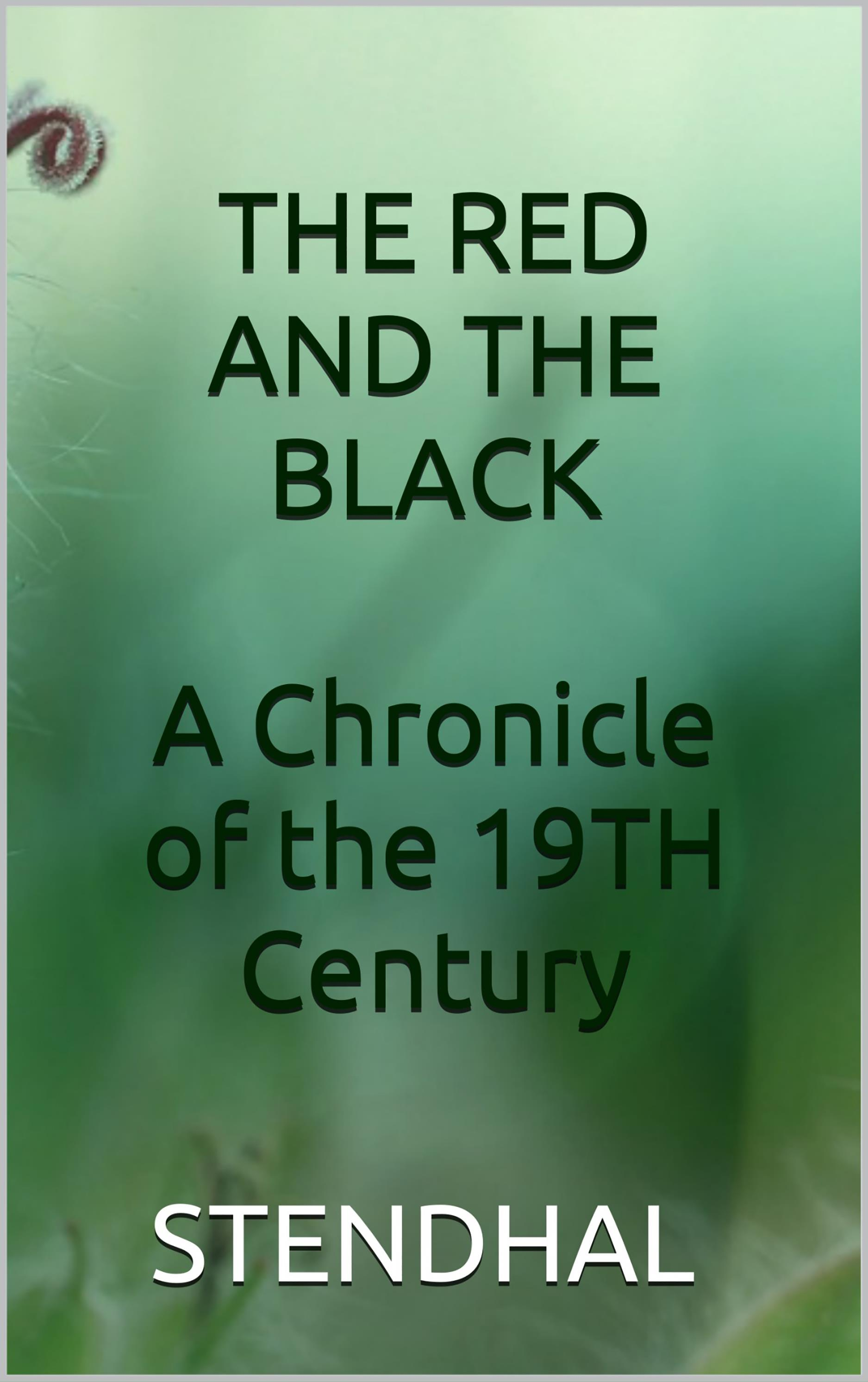 The red and the black - A chronicle of the 19th century