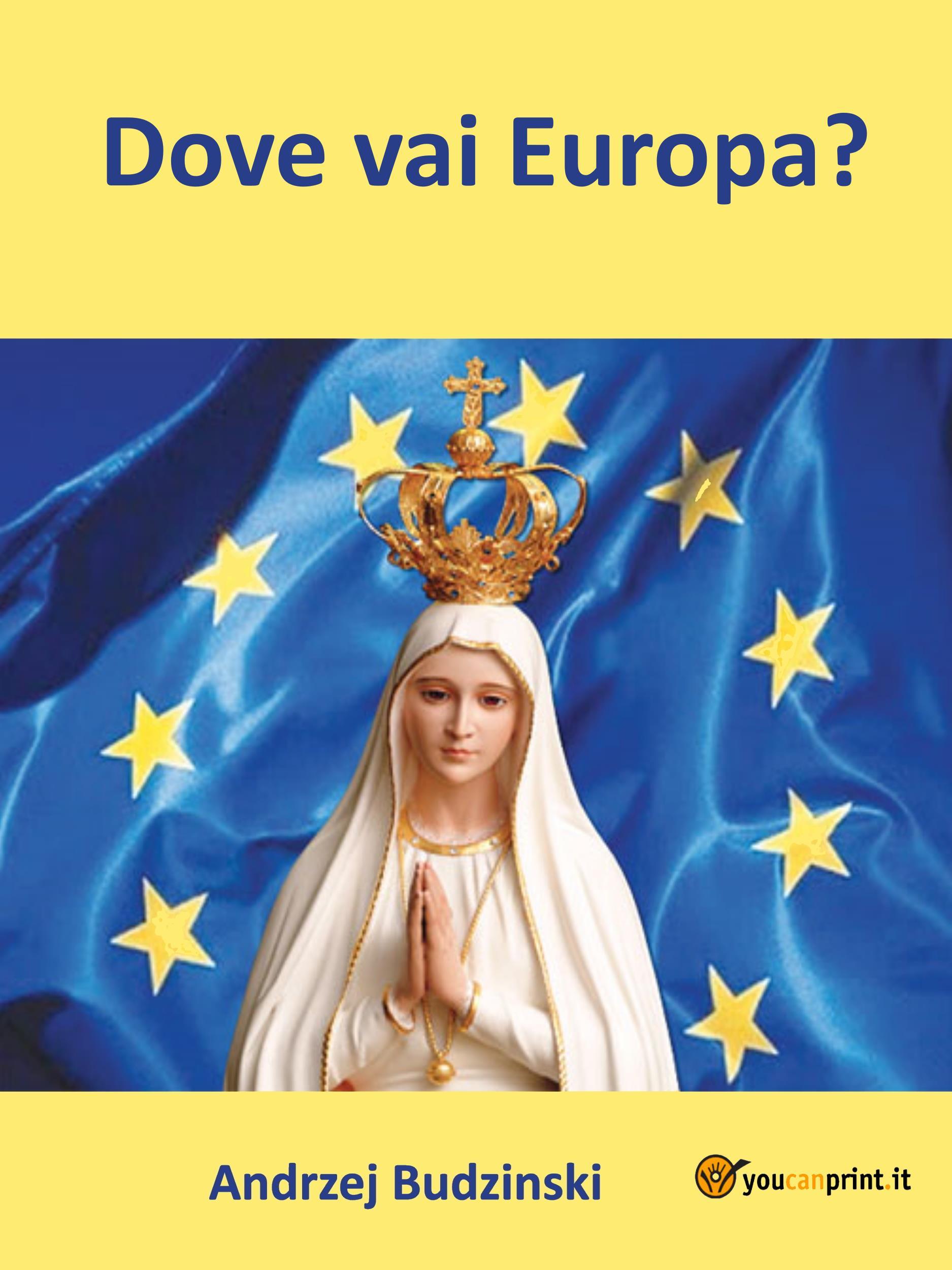 Dove vai Europa?
