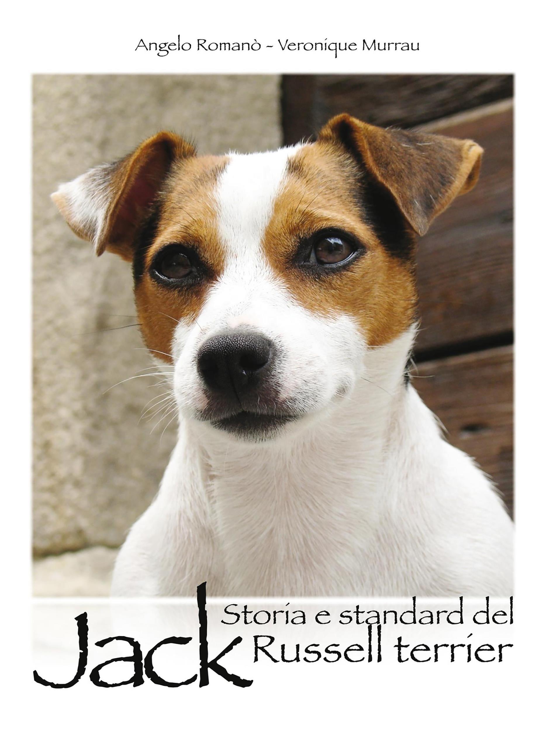 Storia e standard del Jack Russel terrier