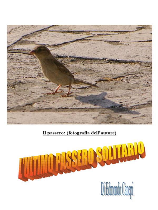 L'ultimo passero solitario