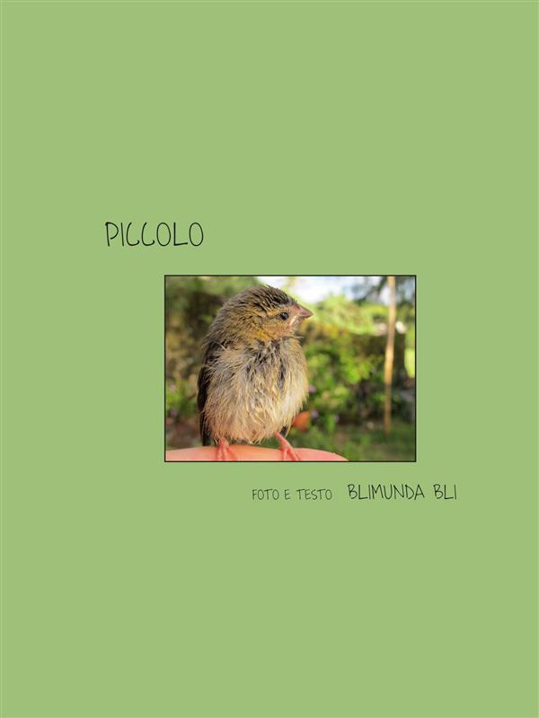 Piccolo - Versione italiana
