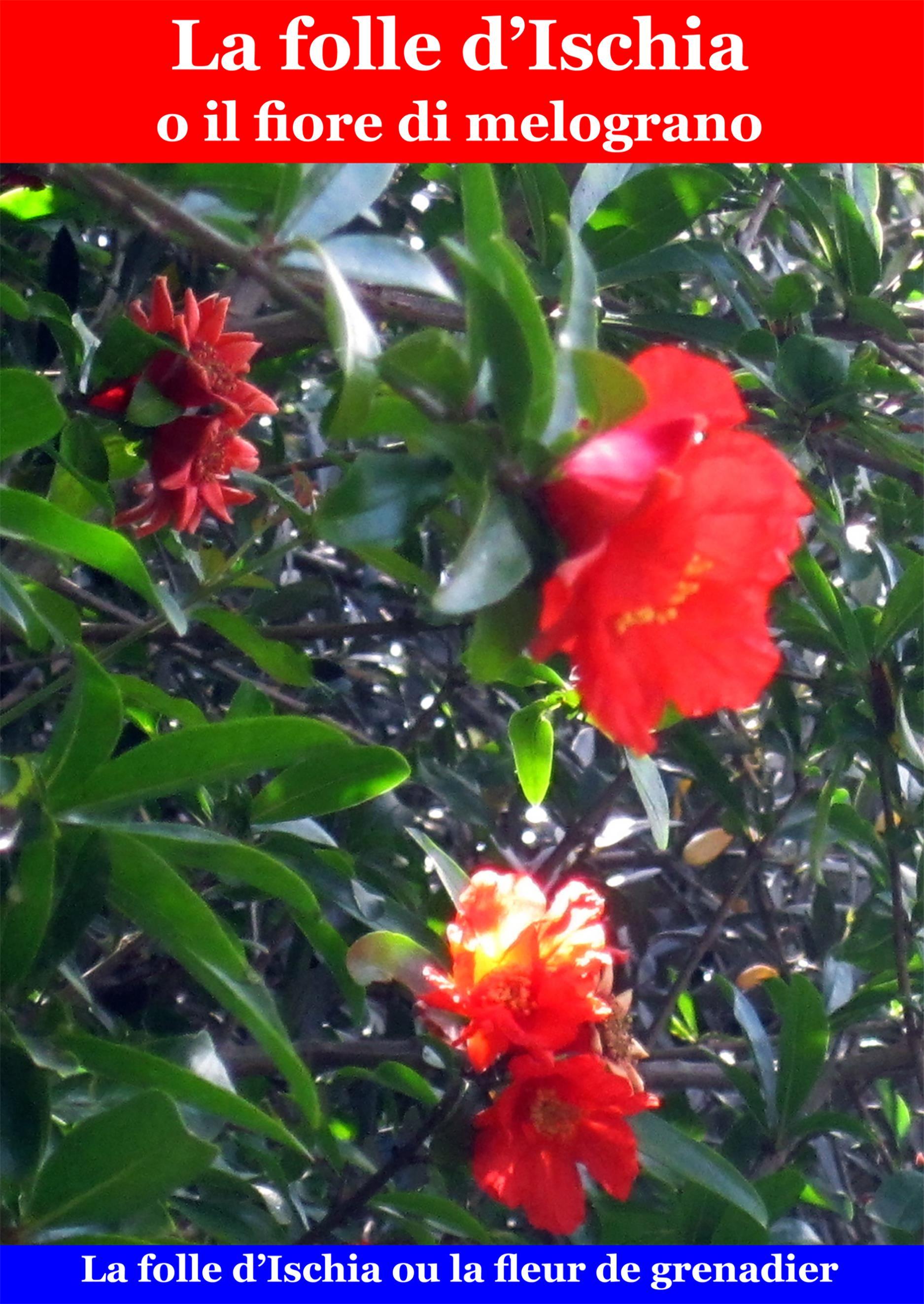 La folle d'Ischia o il fiore di melograno