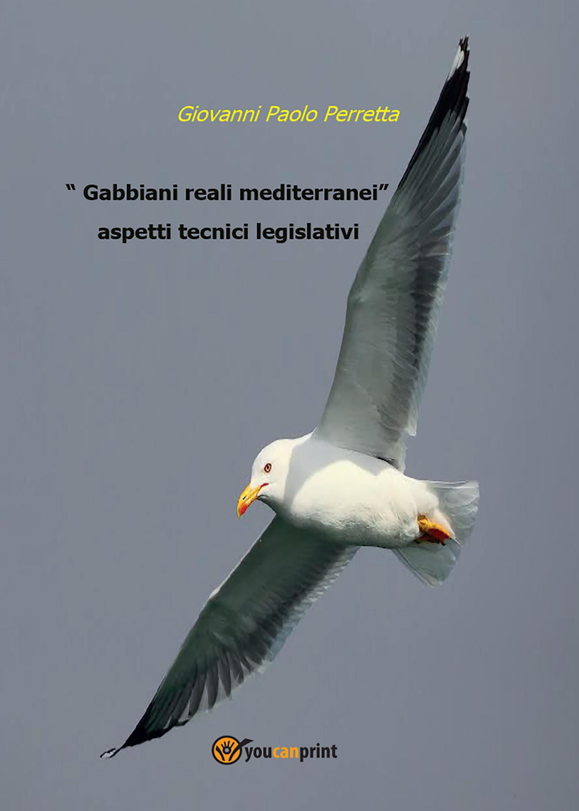 Gabbiani reali mediterranei aspetti tecnici legislativi. Golfo di Gaeta