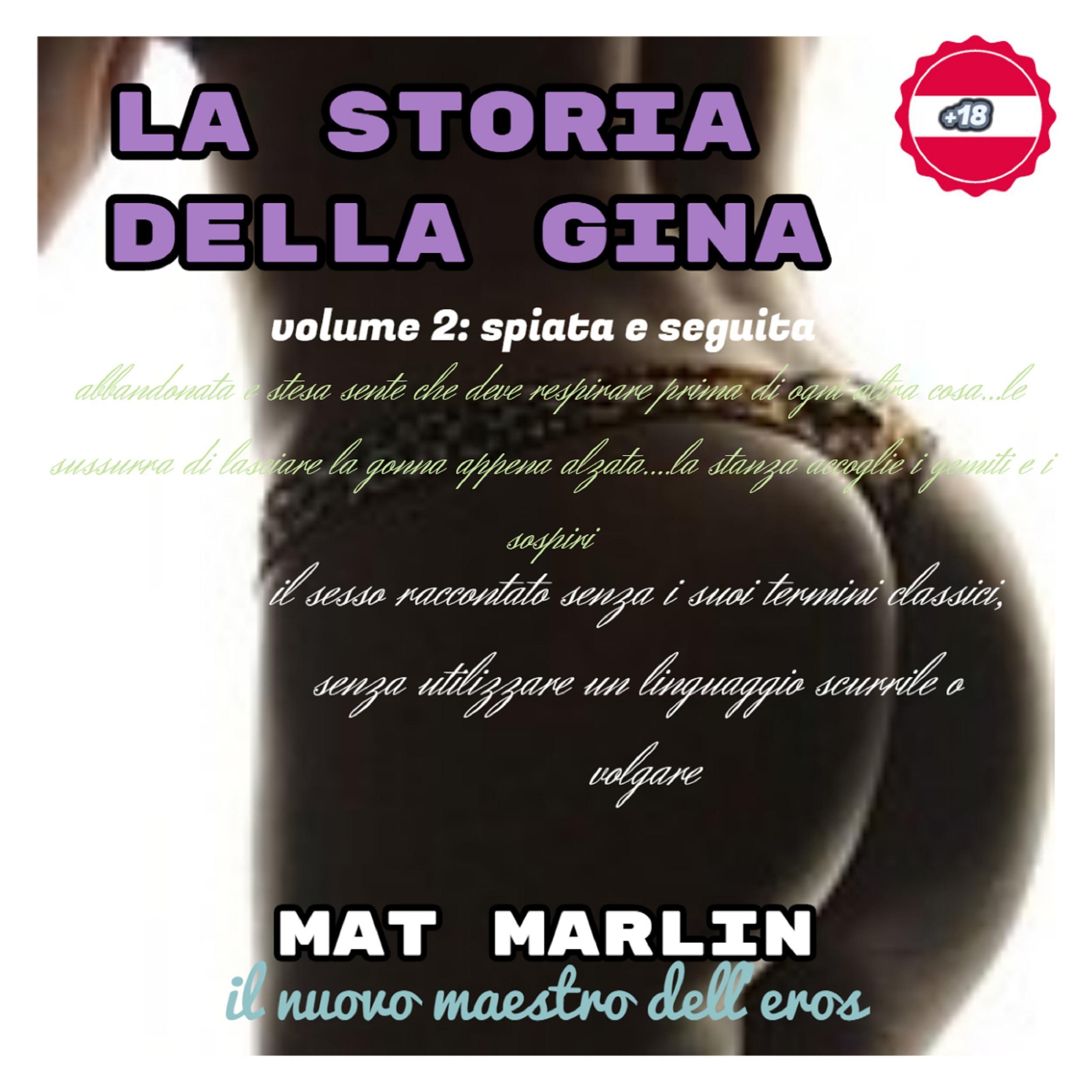 La storia della Gina, volume due, spiata e seguita