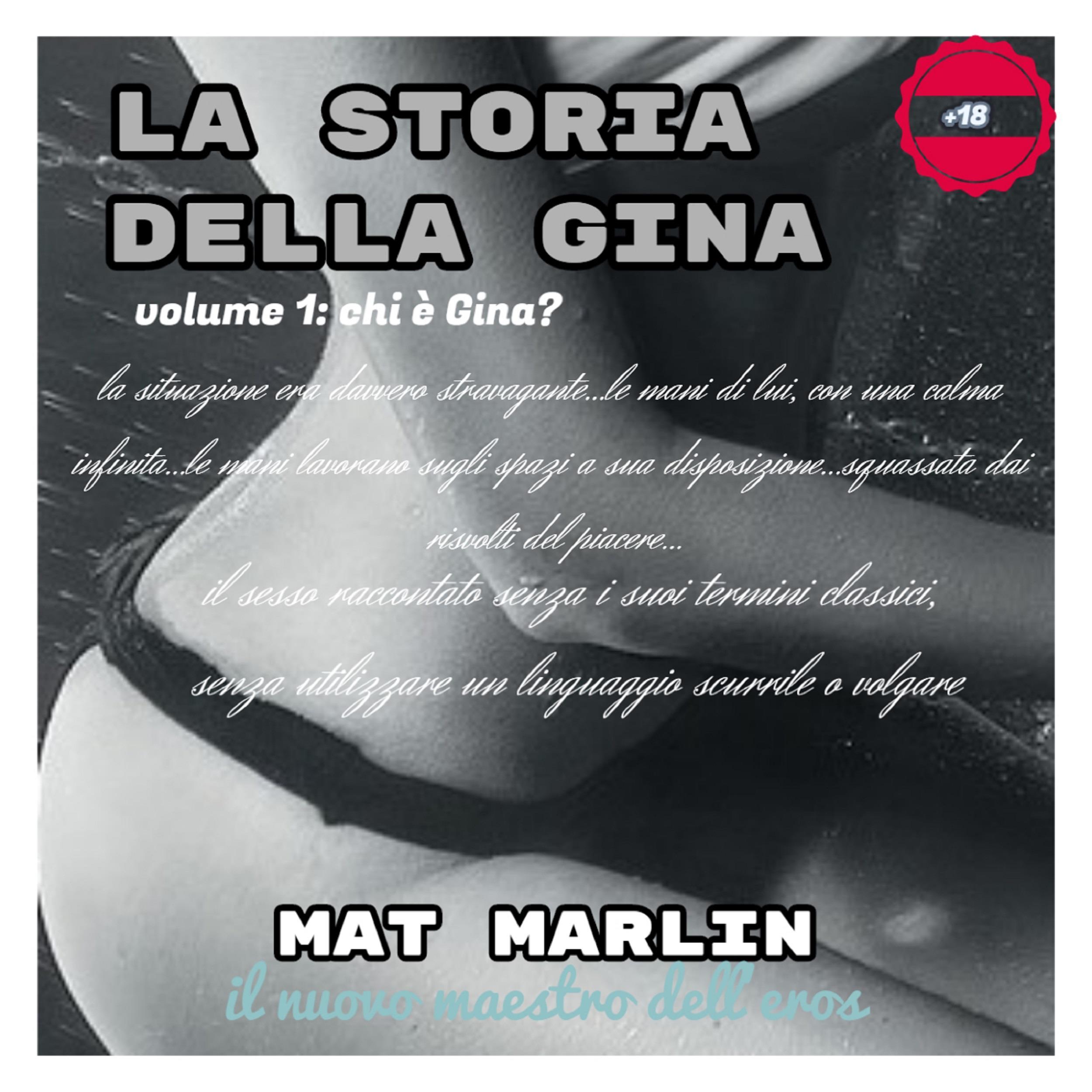 La storia della Gina, volume uno, Chi è Gina?