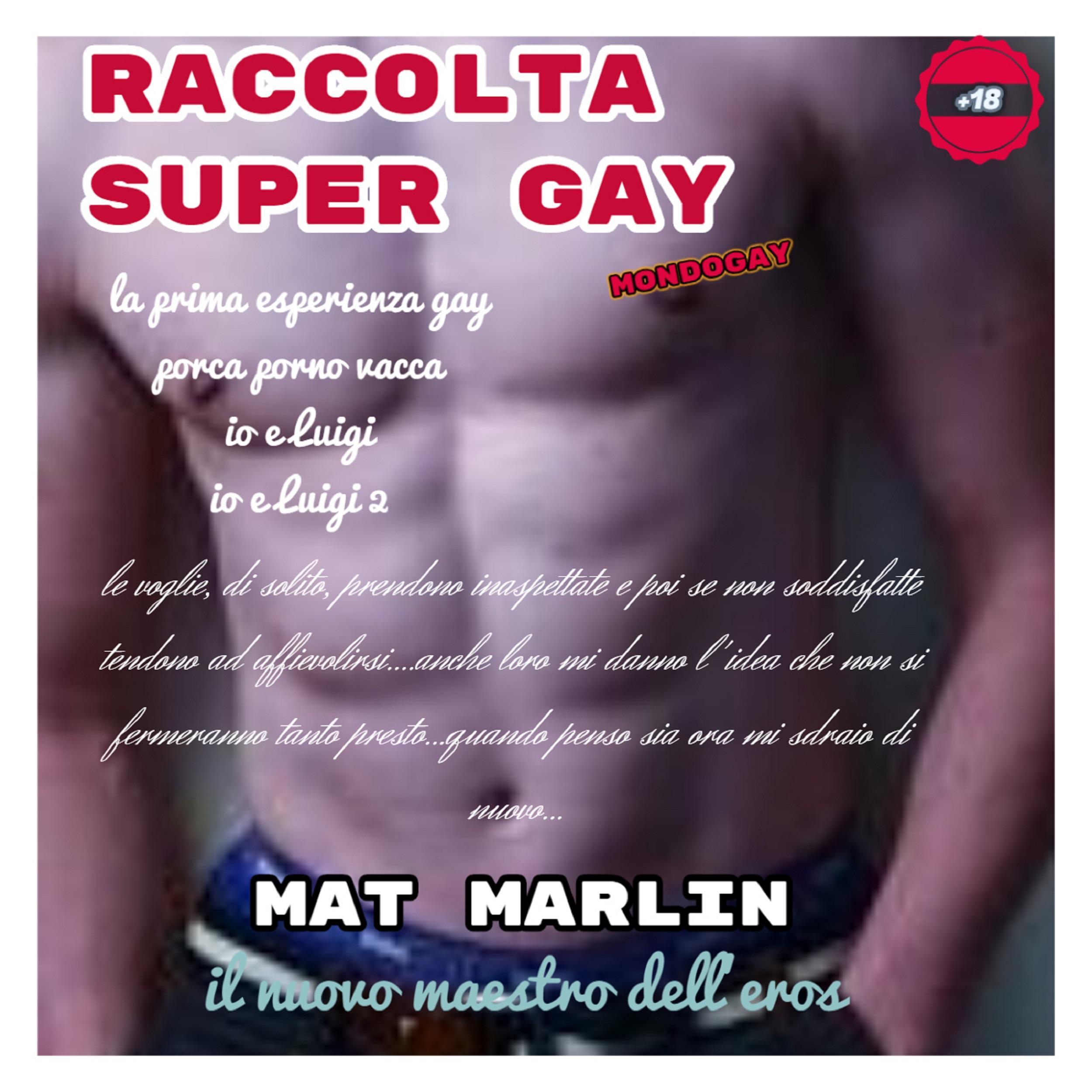 Raccolta Super Gay [Mat Marlin]