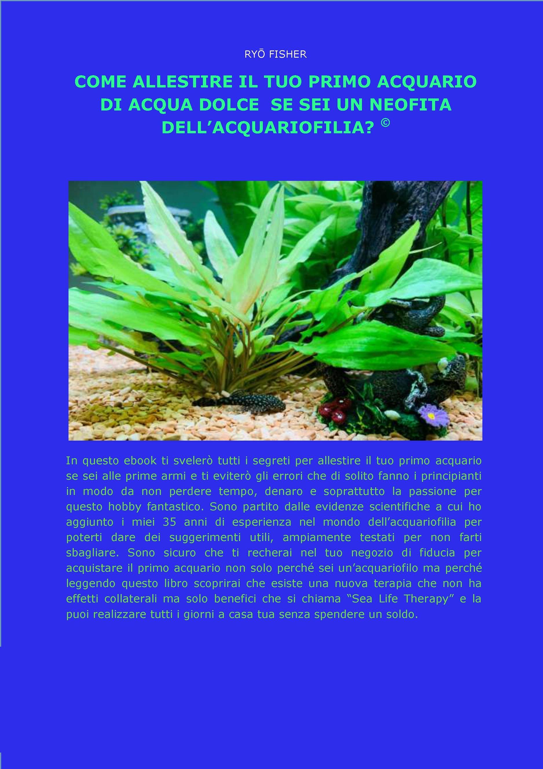 Come allestire il tuo primo acquario di acqua dolce  se sei un neofita dell'acquariofilia?©