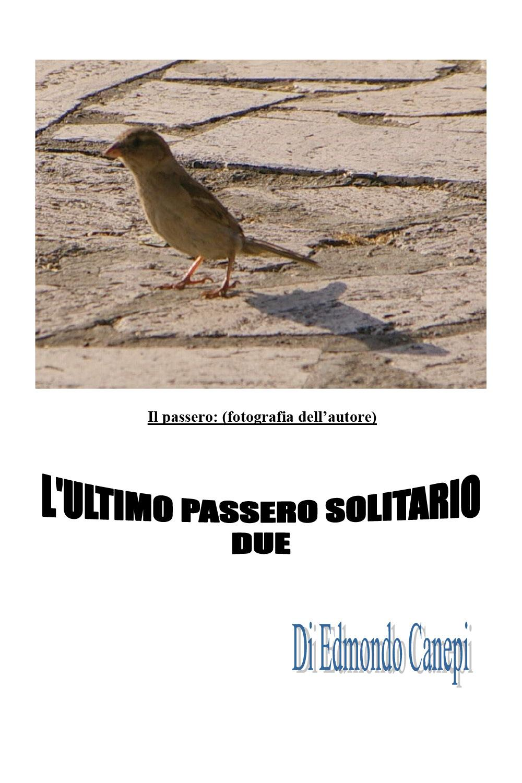 L'ultimo passero solitario. Seconda edizione