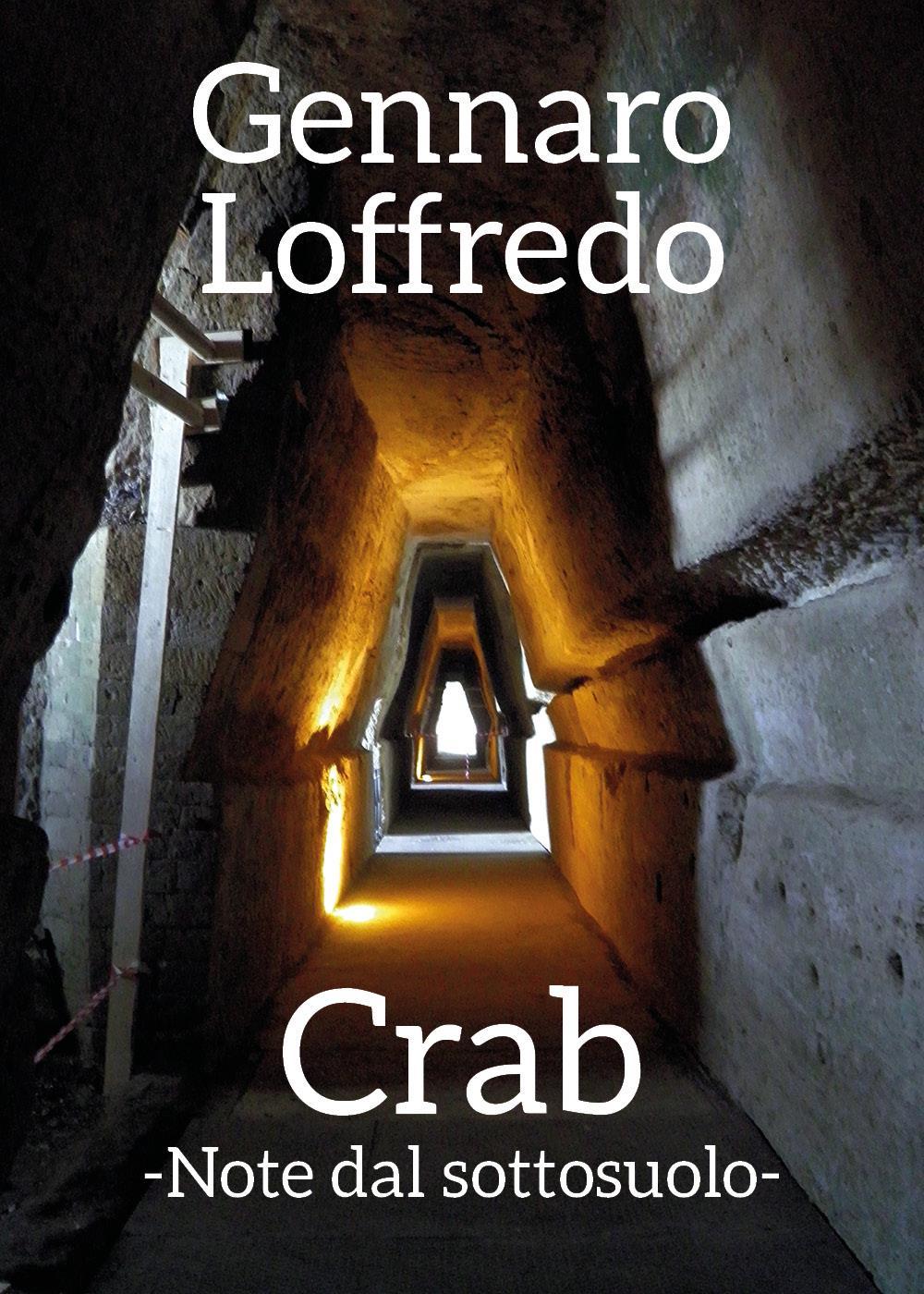 Crab -Note dal sottosuolo-
