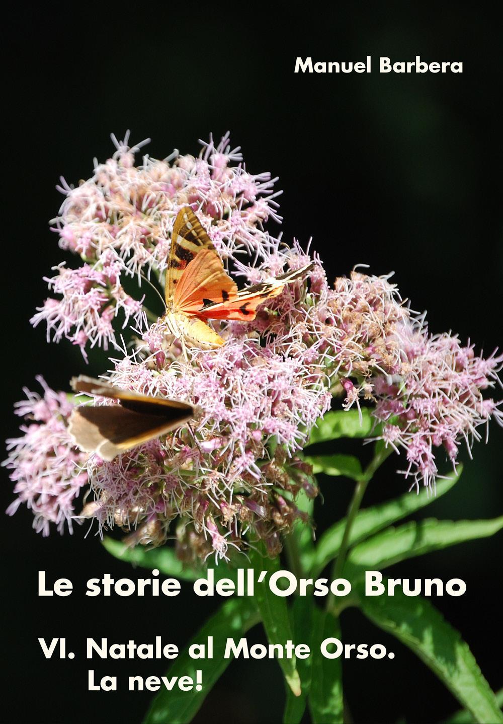 Le storie dell'Orso Bruno VI. Natale al Monte Orso. La neve!