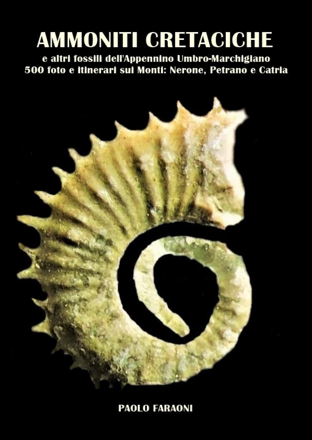 Ammoniti Cretaciche