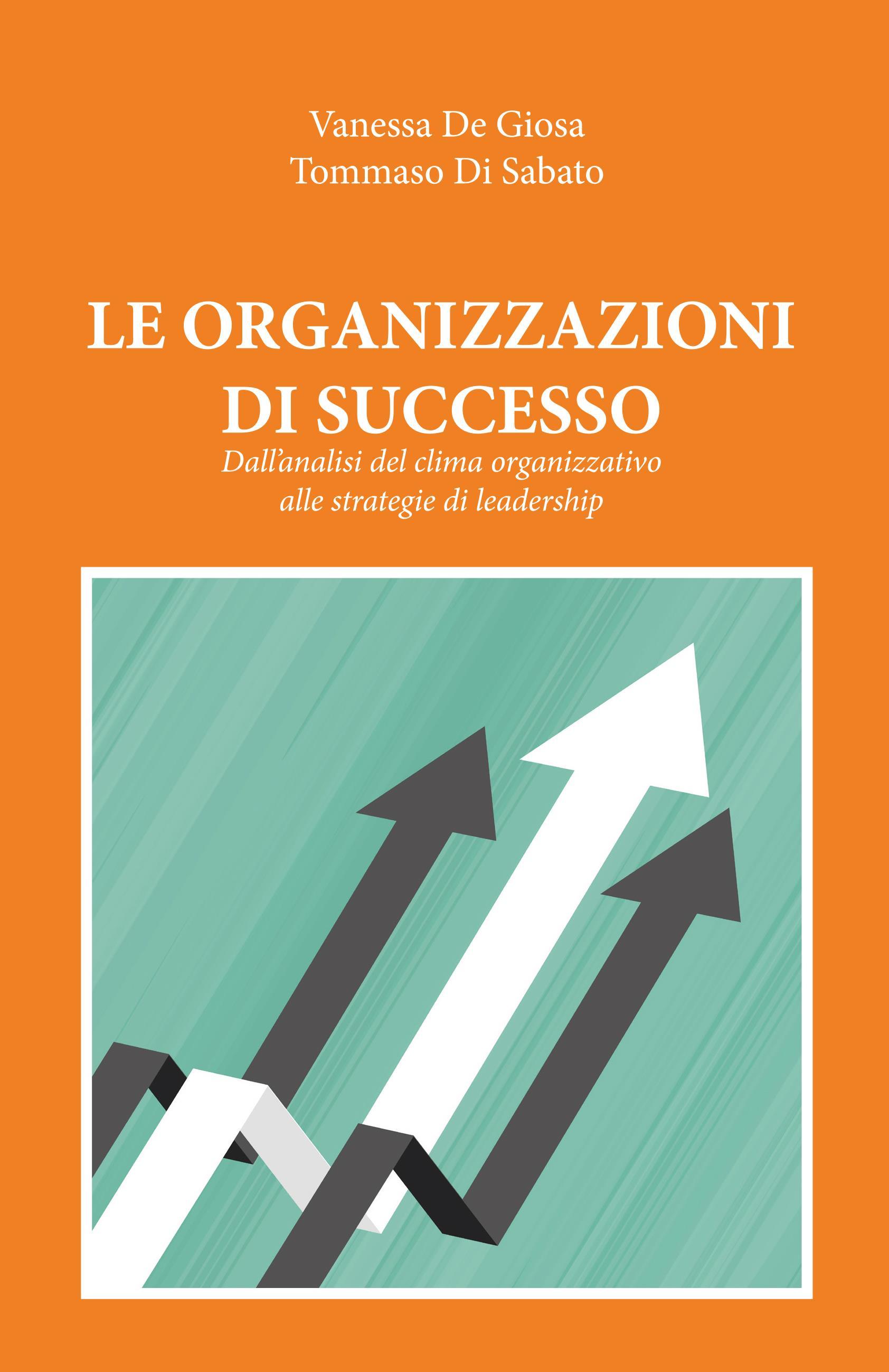 LE ORGANIZZAZIONI DI SUCCESSO. Dall'analisi del clima organizzativo alle strategie di leadership