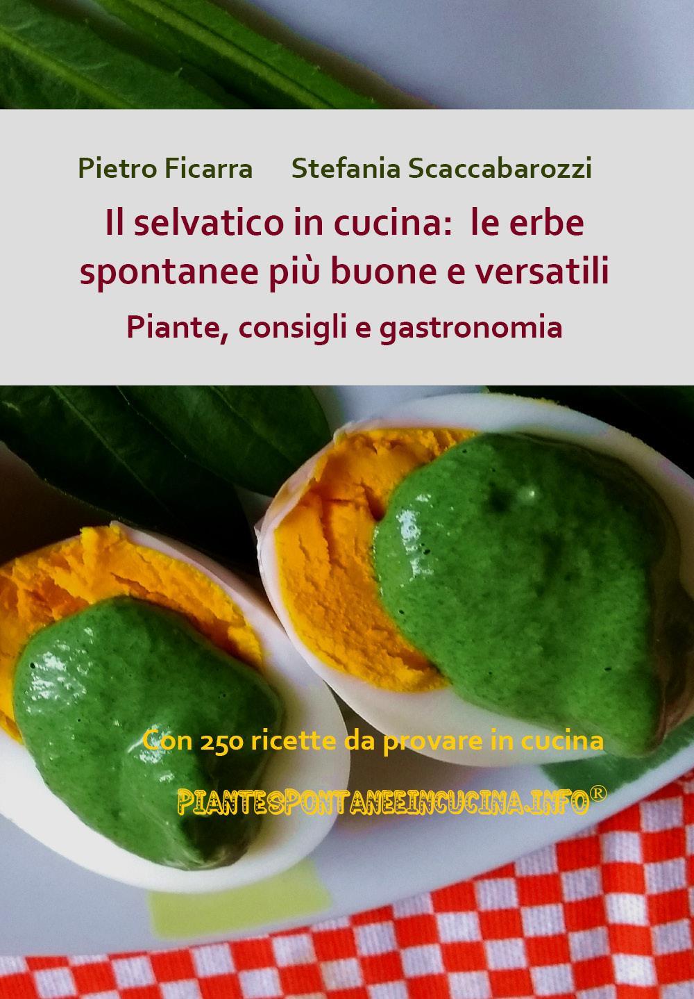 Il selvatico in cucina: le erbe spontanee più buone e versatili. Piante, consigli e gastronomia.