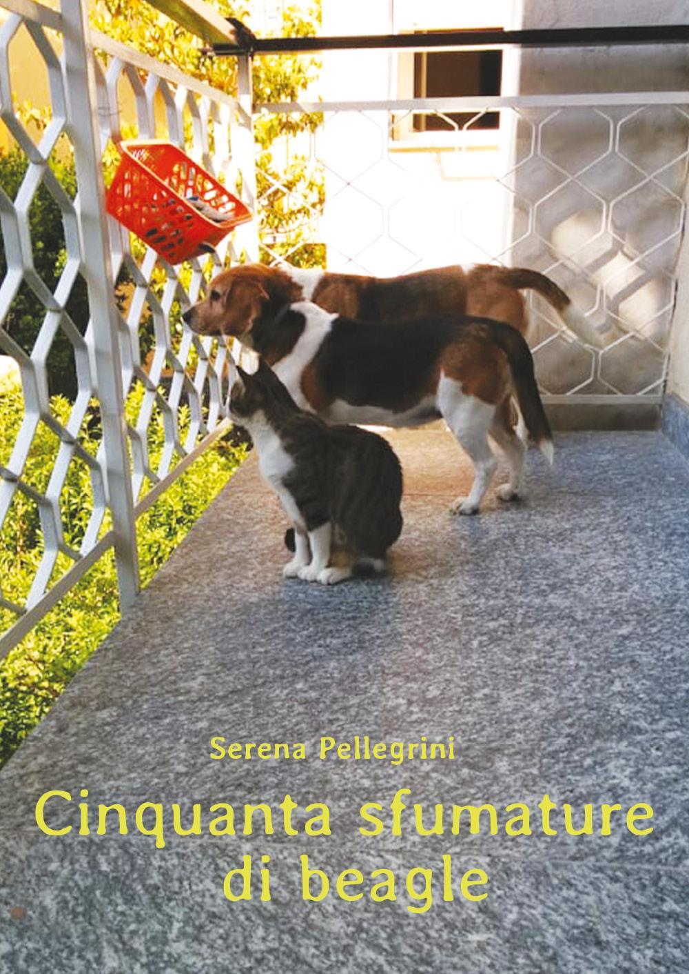 Cinquanta Sfumature di Beagle