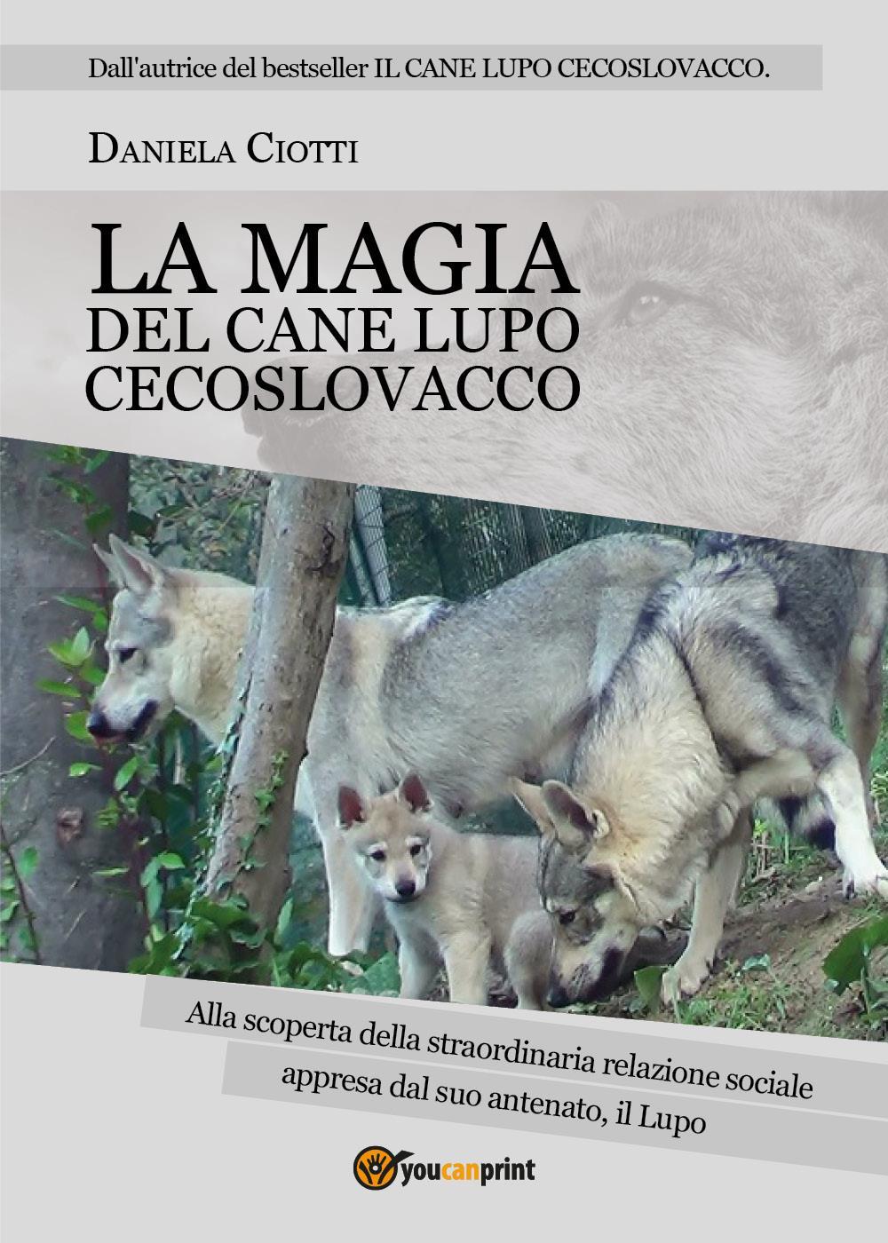 LA MAGIA DEL CANE LUPO CECOSLOVACCO - alla scoperta della straordinaria relazione sociale appresa dal suo antenato, il lupo