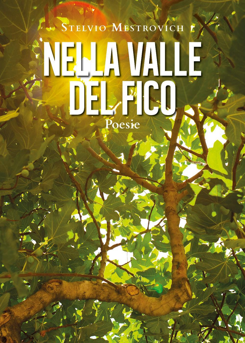 Nella Valle del Fico. Poesie