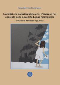 L'analisi e le soluzioni della crisi d'impresa nel contesto della novellata Legge fallimentare. Strumenti aziendali e giuridici