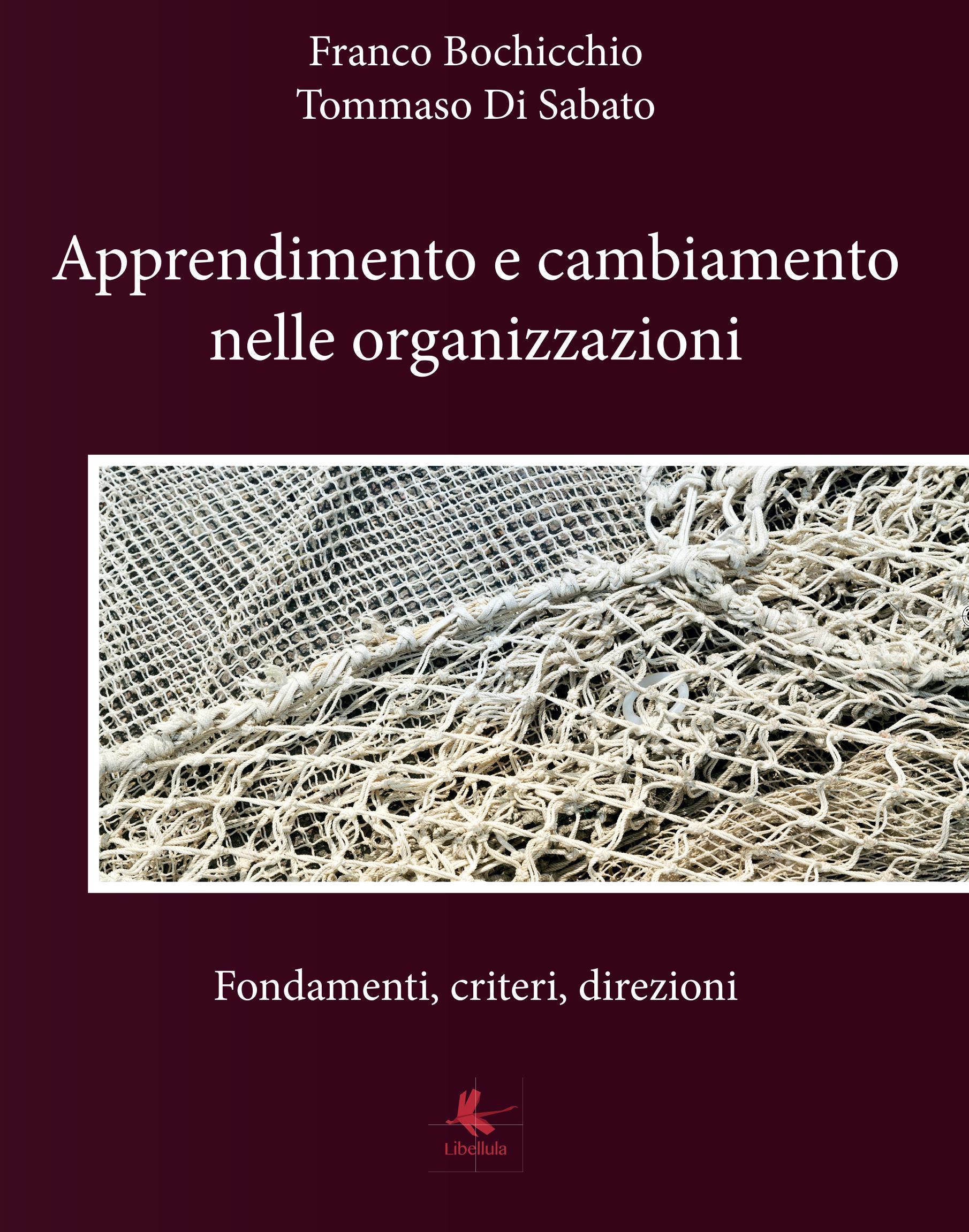 Apprendimento e cambiamento nelle organizzazioni - Fondamenti, criteri, direzioni