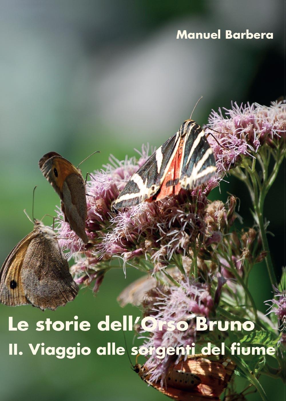 Le storie dell'Orso Bruno. II. Viaggio alle sorgenti del fiume