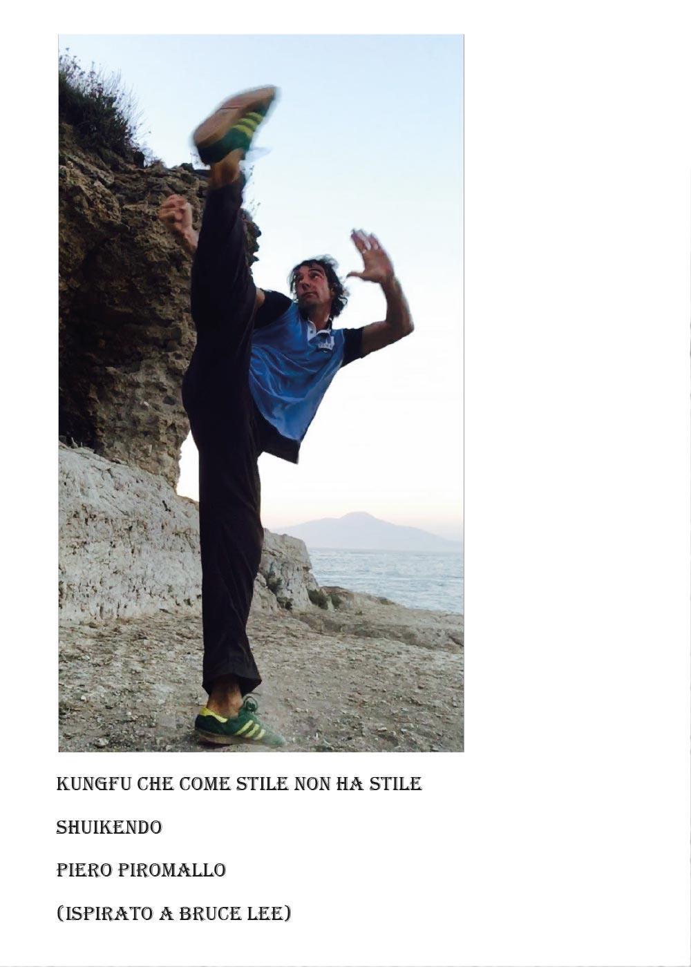 Kungfu che come stile non ha stile Shuikendo