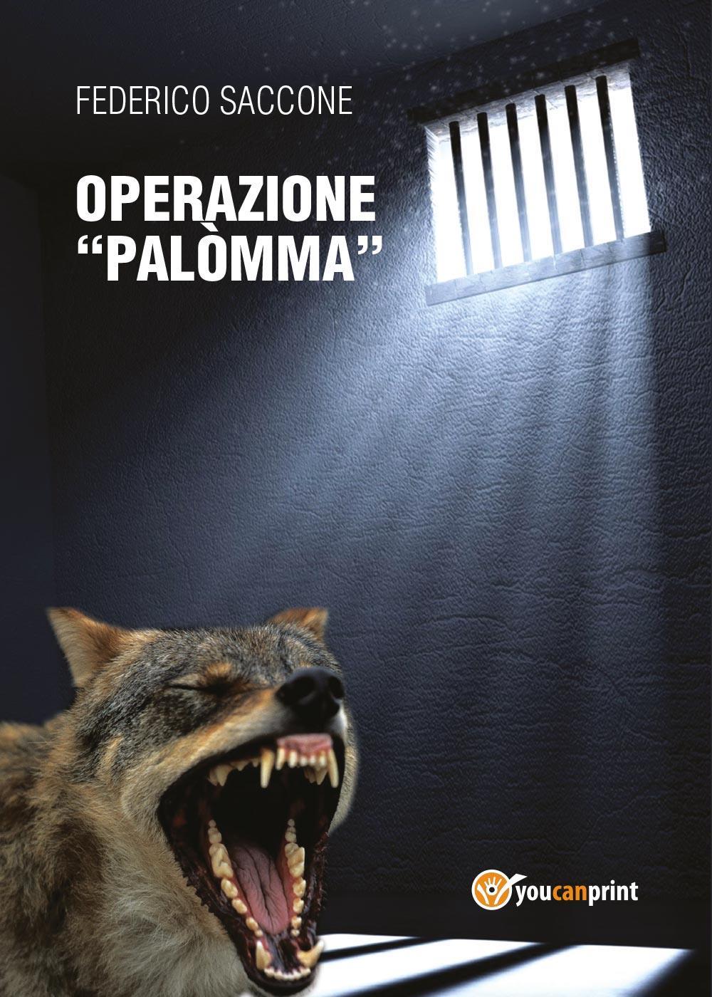 """Operazione """"Palòmma"""""""