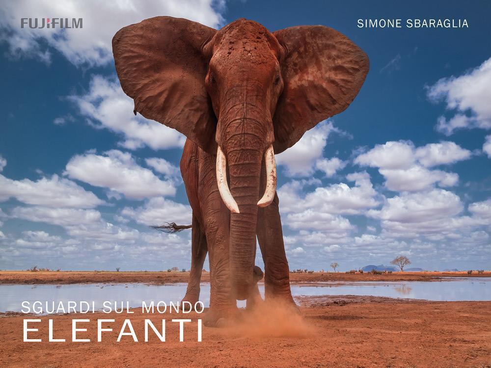Sguardi sul Mondo: Elefanti