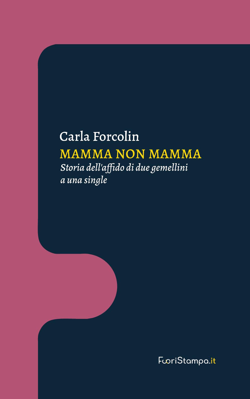 Mamma non mamma. Storia dell'affido di due gemellini a una single