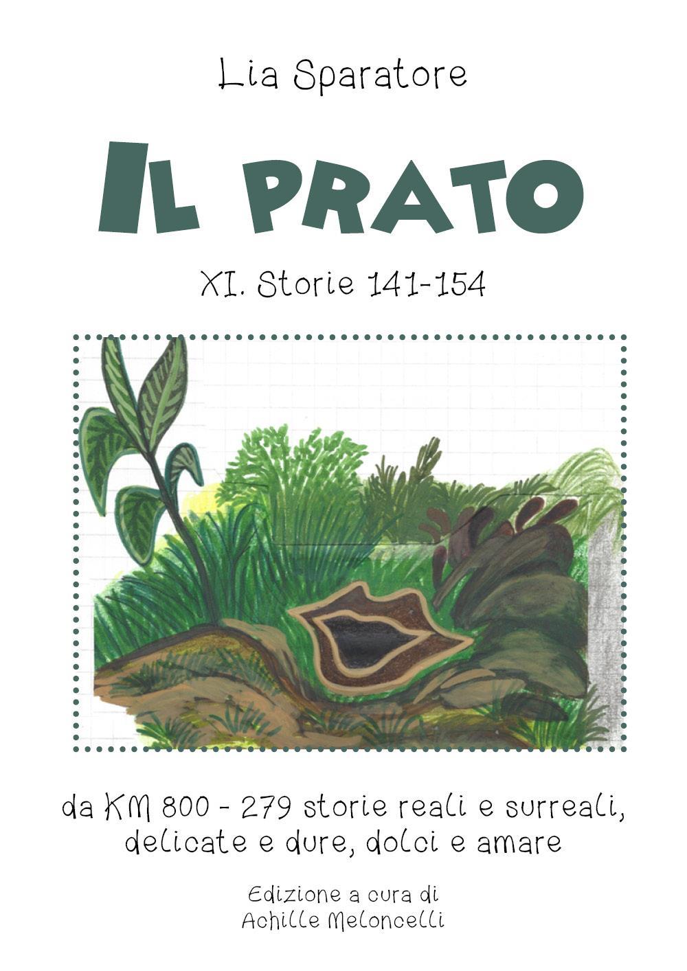 Il prato XI. Storie 141-154, da KM 800 - 279 storie reali e surreali, delicate e dure, dolci e amare