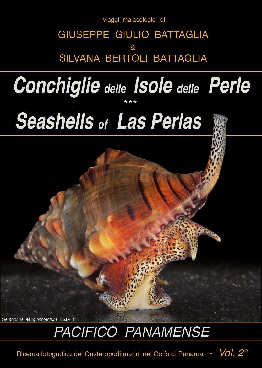 Conchiglie delle Isole delle Perle - Seashells of Las Perlas