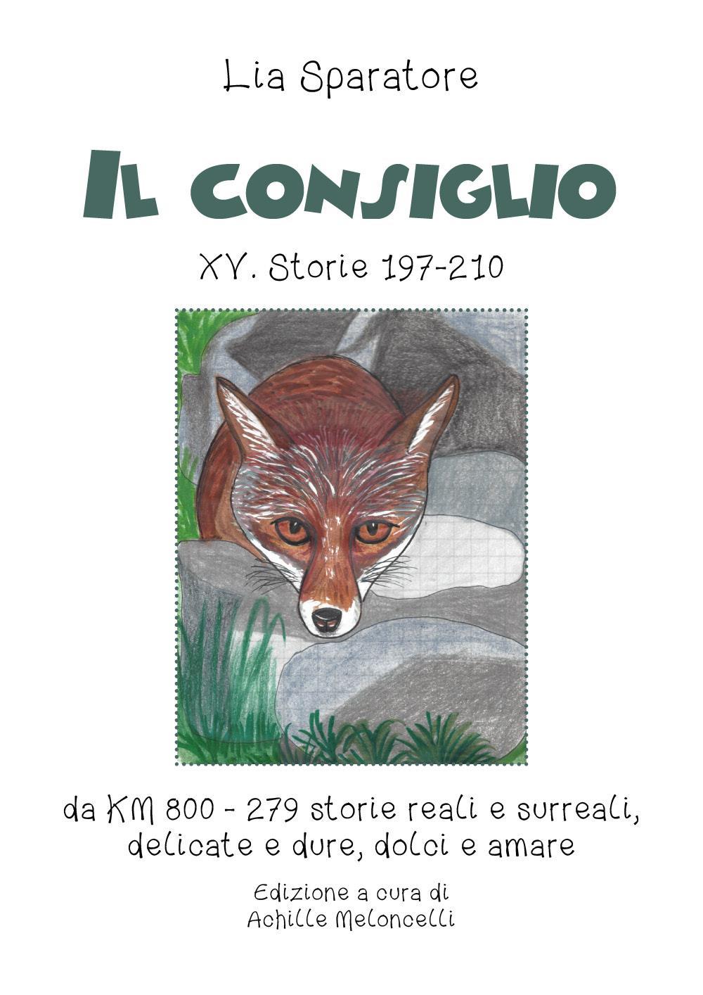 Il consiglio XV. Storie 197-210 da KM 800 - 279 storie reali e surreali, delicate e dure, dolci e amare