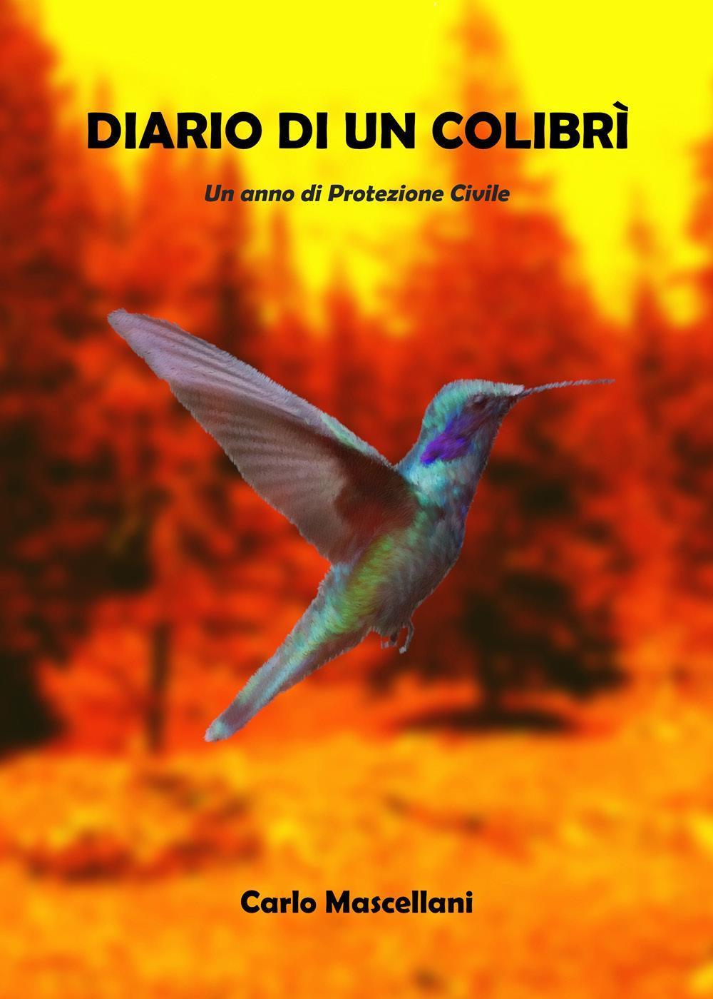 Diario di un colibrì