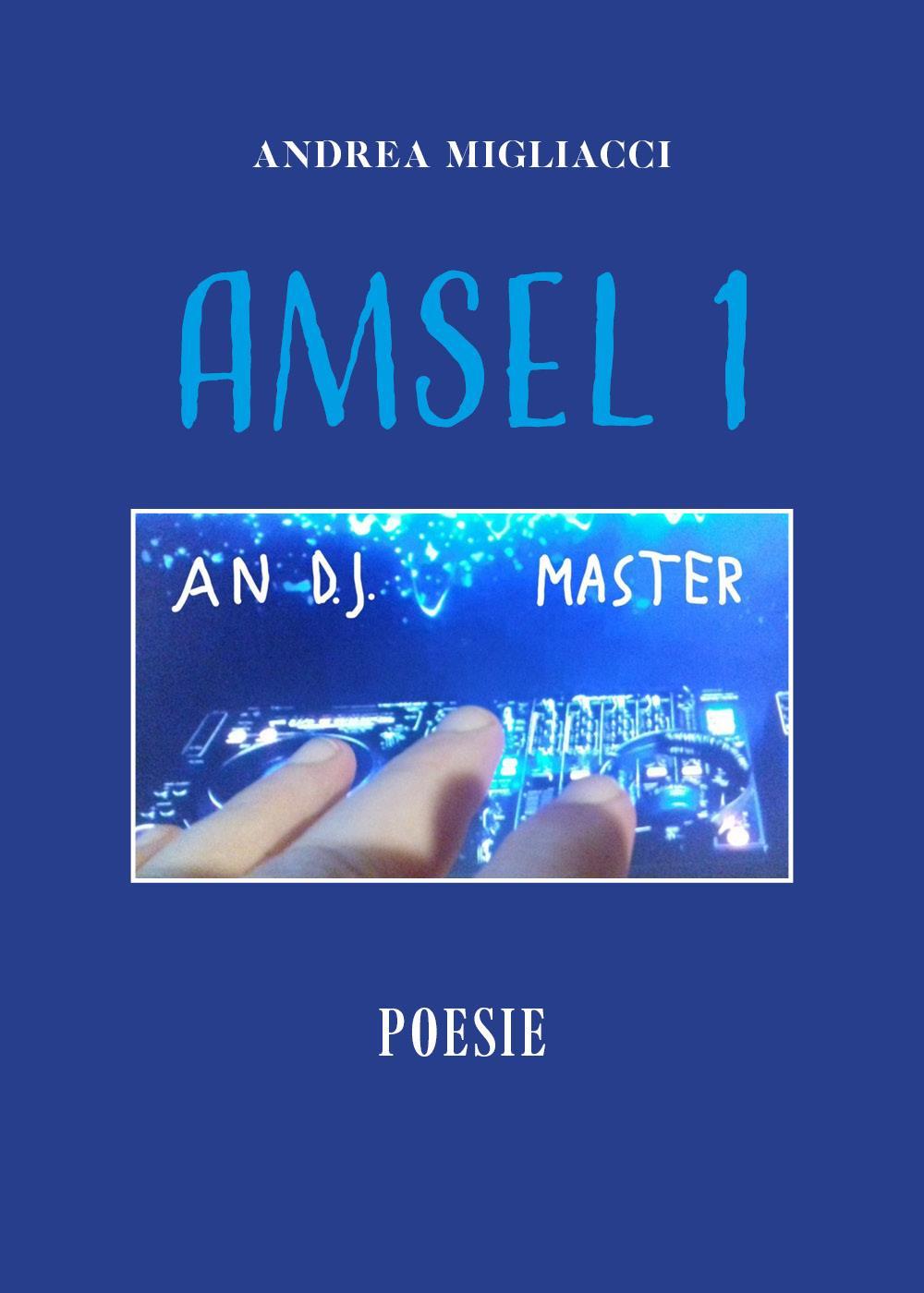 Amsel 1
